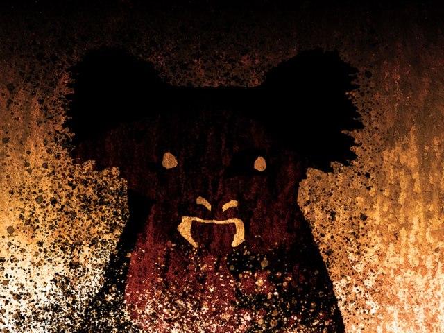 Queimadas: Urso Coala